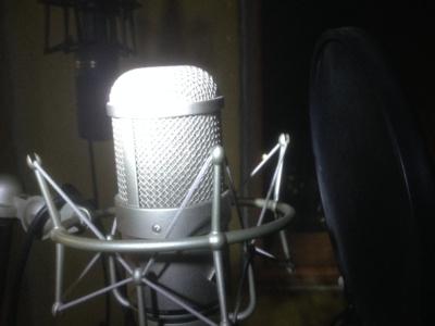 Продюсирование вокала (Ольга)